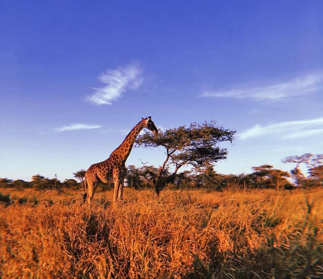 Heather P in Tanzania